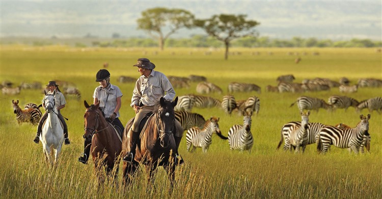 Great Limpopo Transfrontier Park