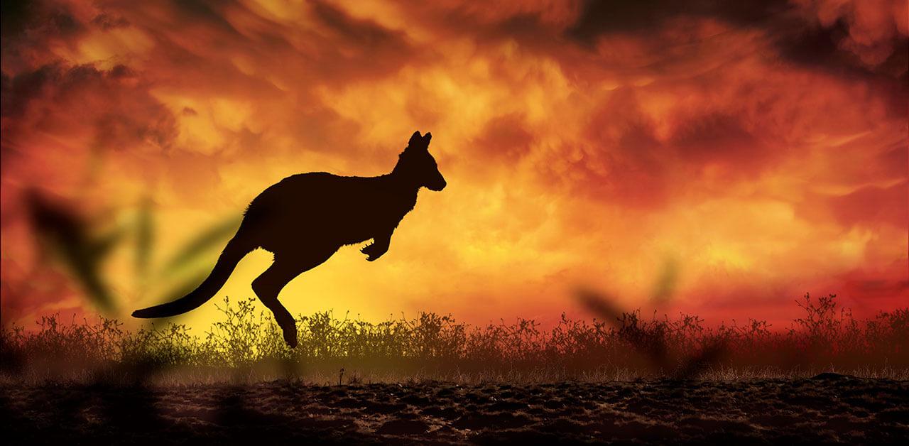 Il peso dei cambiamenti climatici negli incendi in Australia
