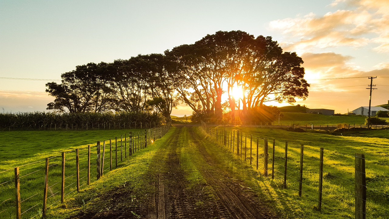 Qual è l'aliquota IVA per la recinzione di un terreno agricolo?