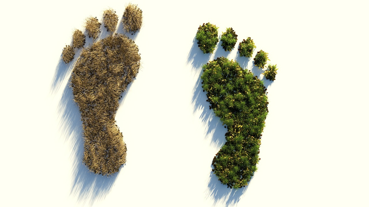 Impronta ecologica: cos'è e come viene calcolata?