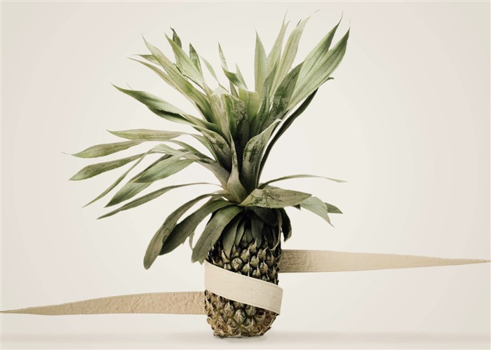 Ecopelle vegetale all'ananas: Ananas Anam