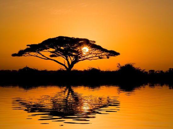ecoturismo africa senegal