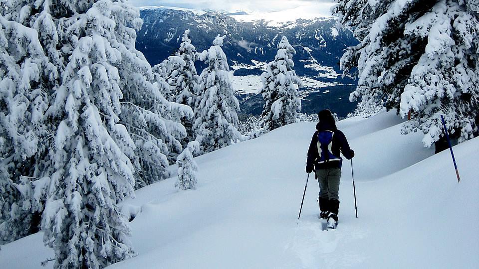 ecoturismo: neve italia 2017