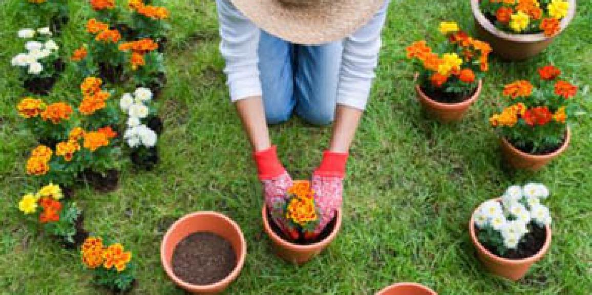 hobby giardinaggio in italia