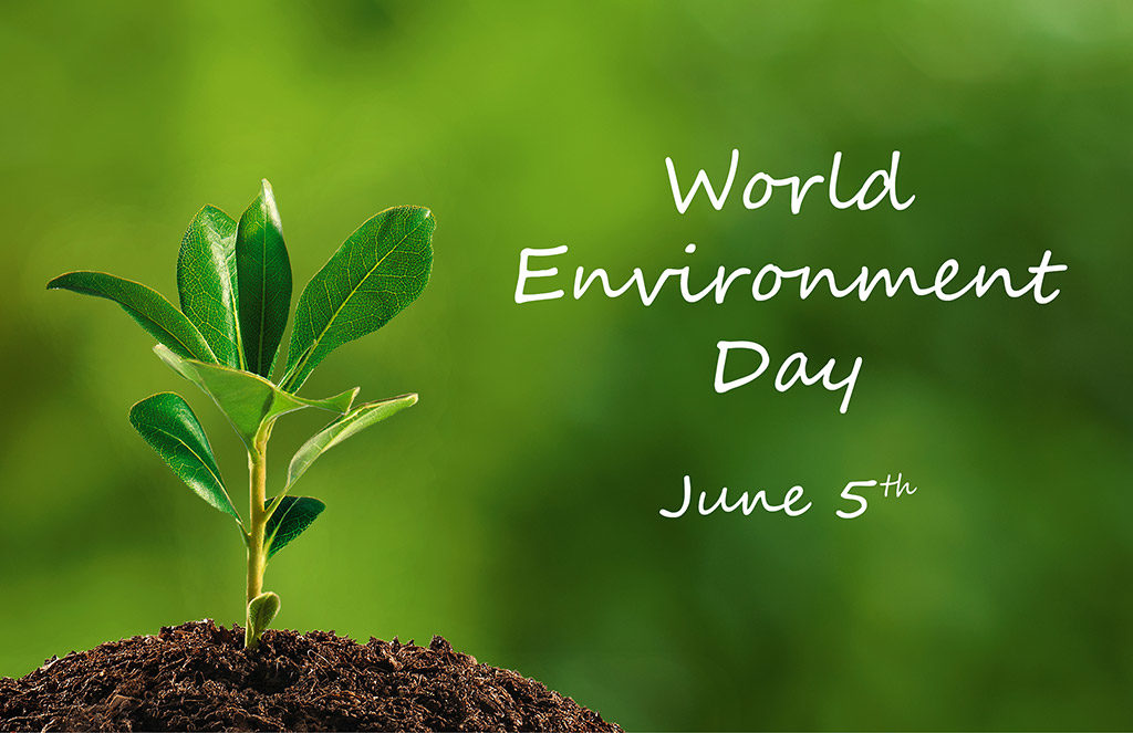 giornata mondiale ambiente 2017