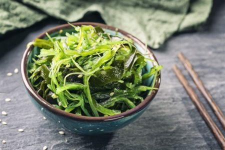 Benefici e proprietà delle alghe